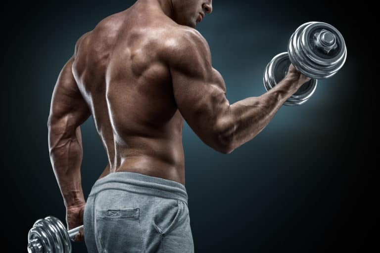 How Much Protein To Build Muscle Do You Need?