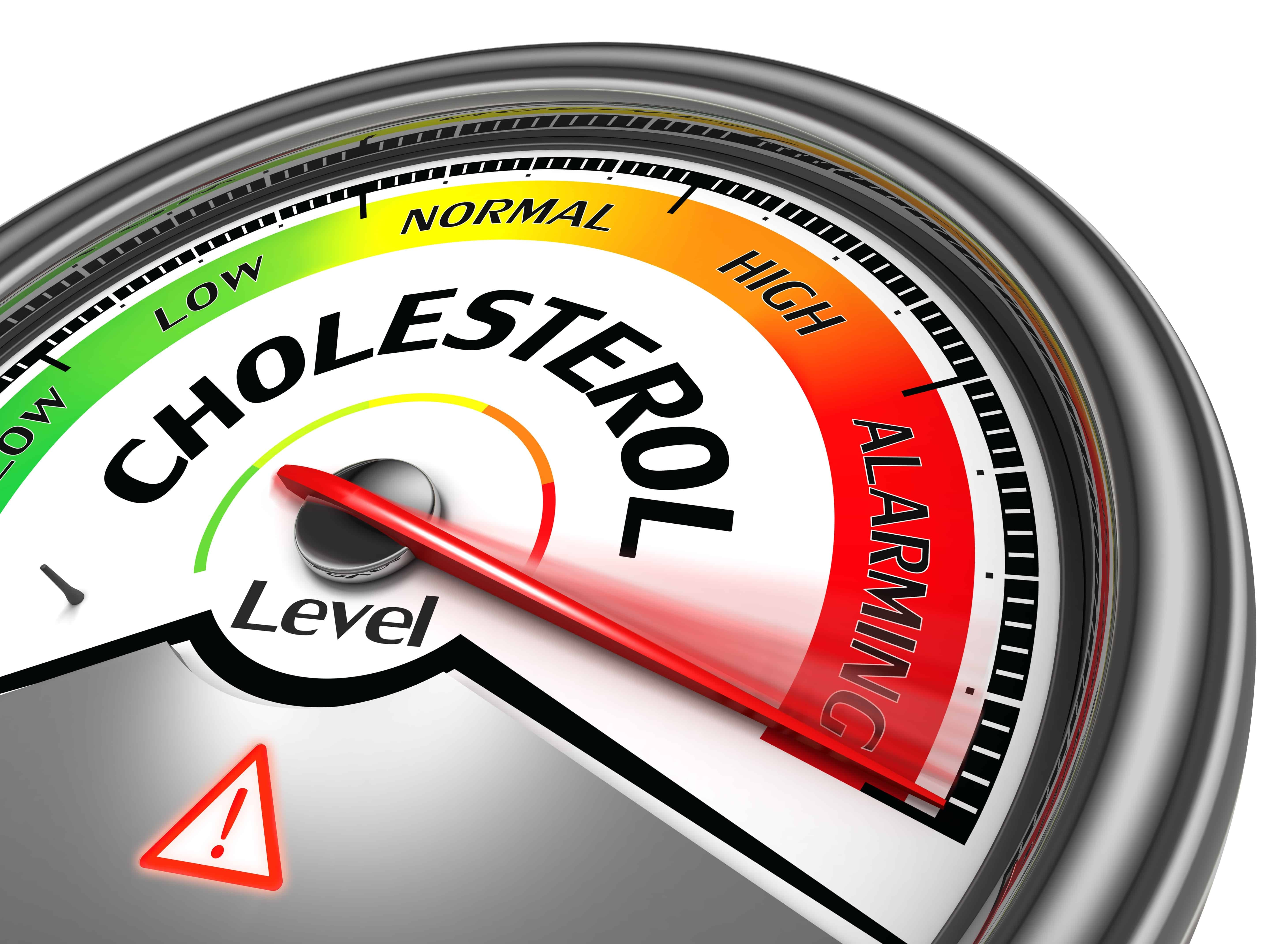 High Cholesterol Foods Can Be Beneficial