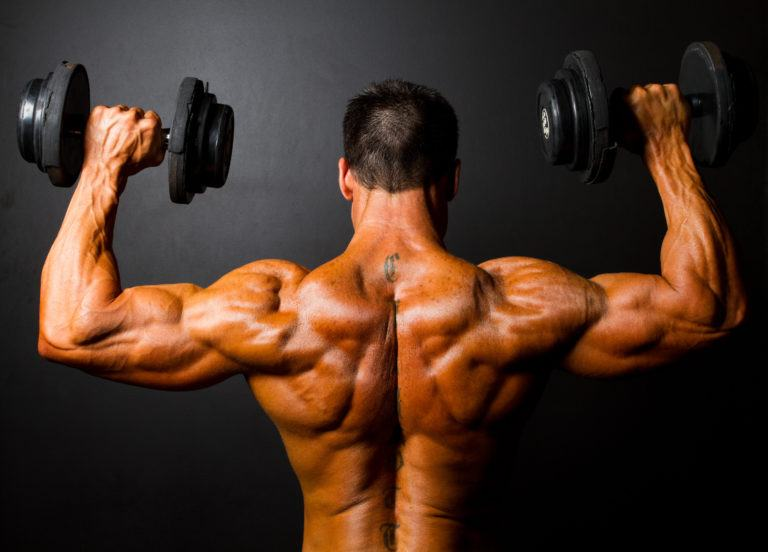 The Best Exercises For Shoulder Muscles