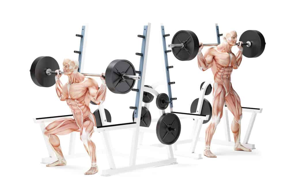 Compound Exercises For Better Results:Squats