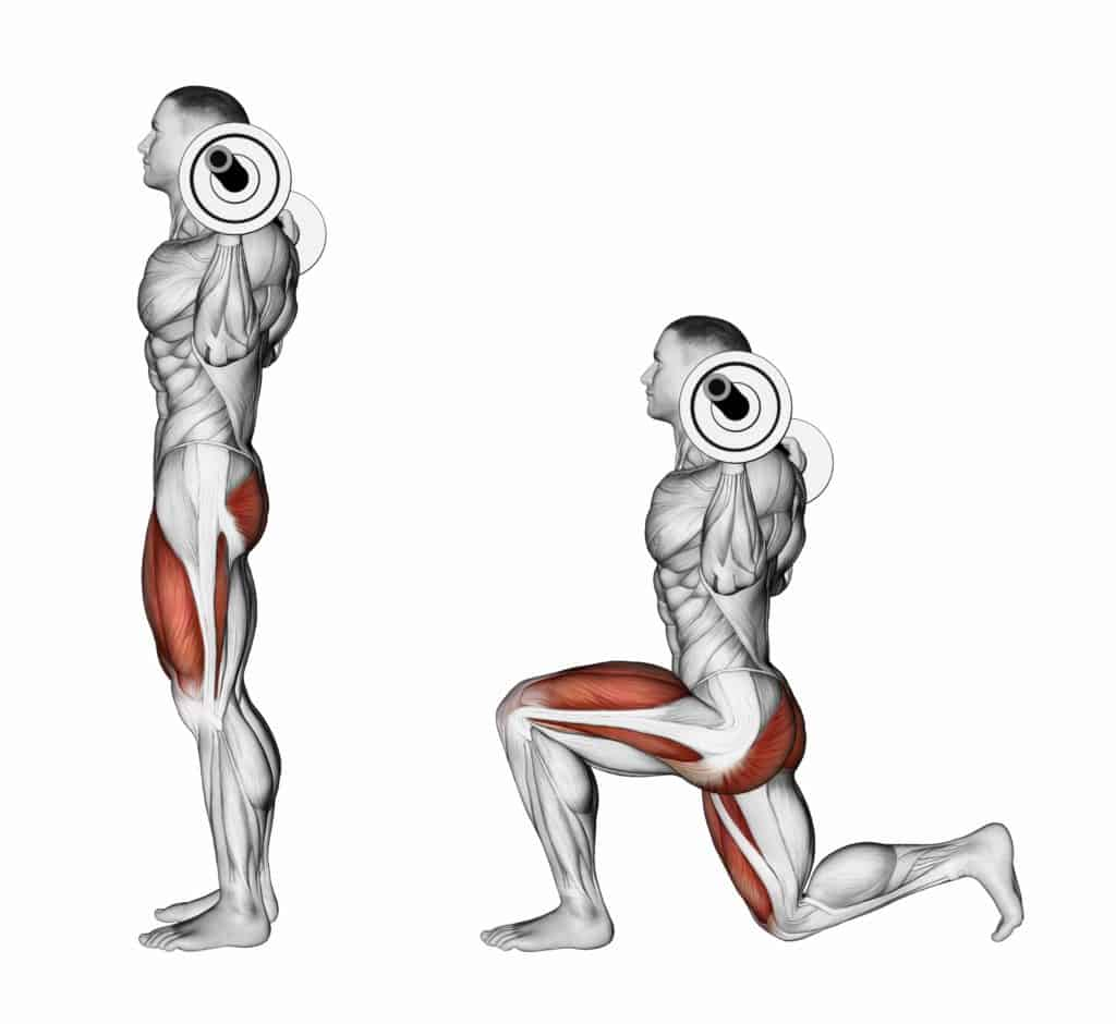 List of Compound exercises:lunges