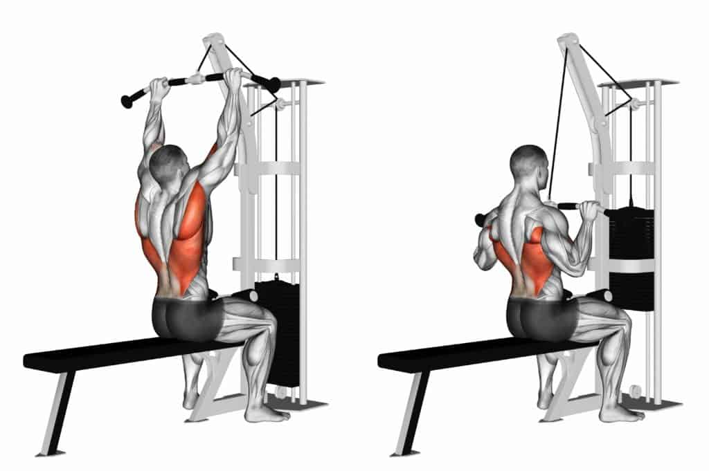 List of Compound exercises:Lat Pull down