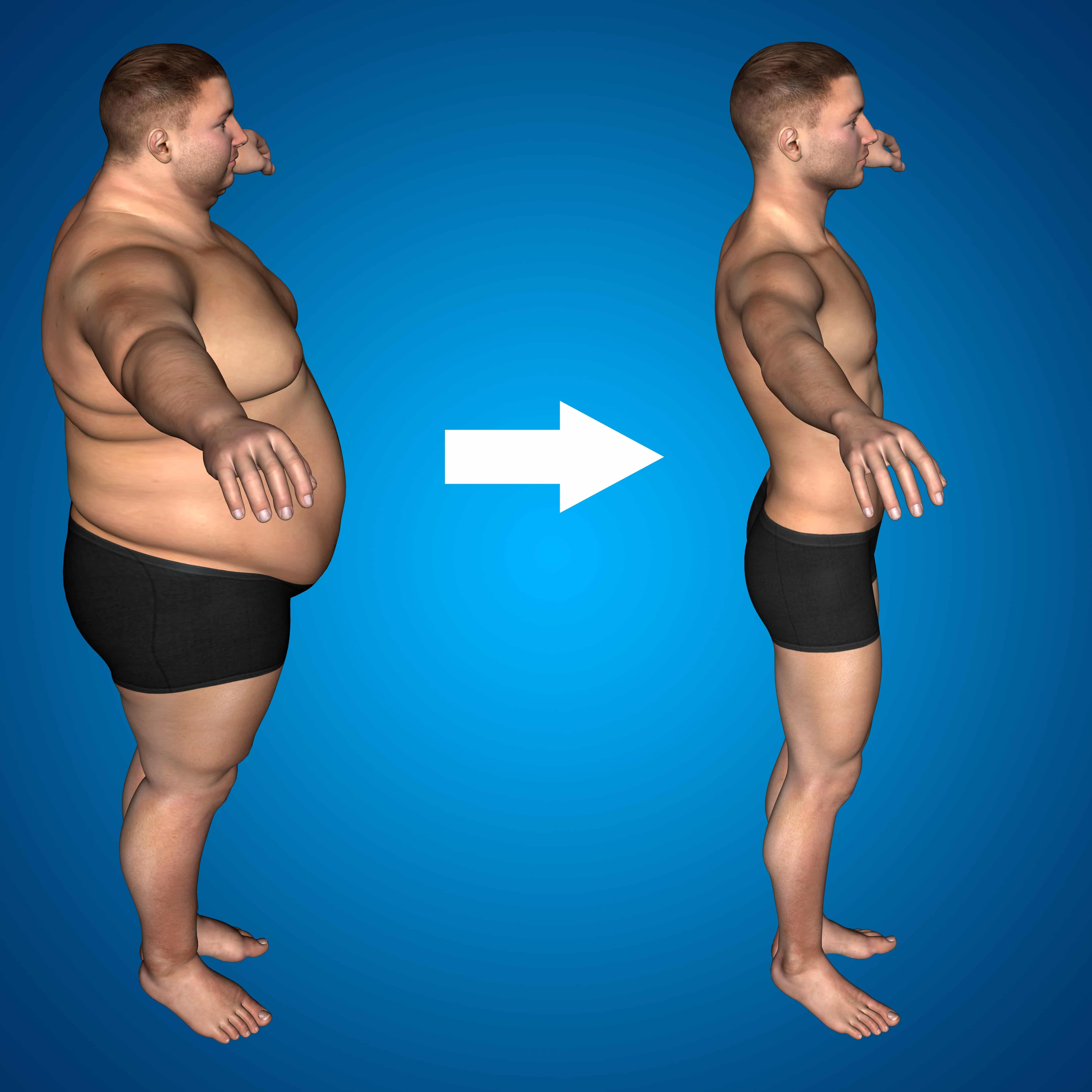 What is fat and how is it stored in the body?