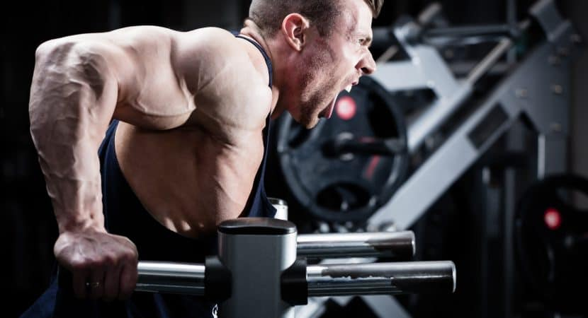 how to build muscle sets and reps