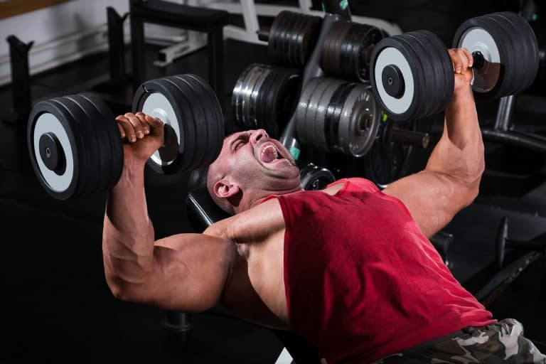 Free Weights and Machines for a Killer Workout