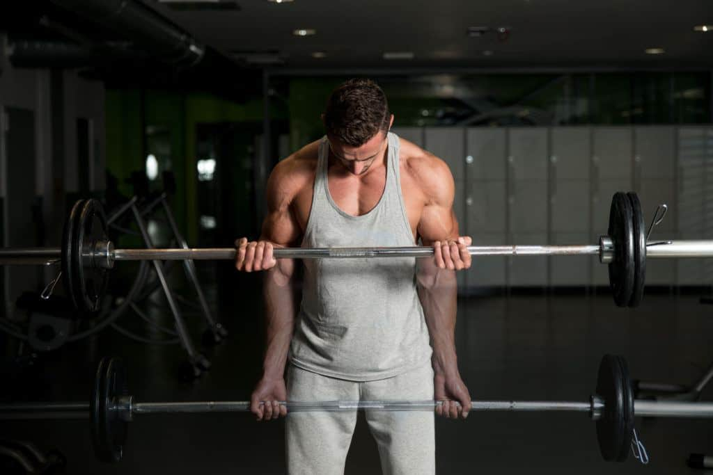 barbell exercises:bicep curls