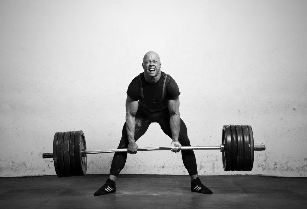 barbell exercises for beginners to master