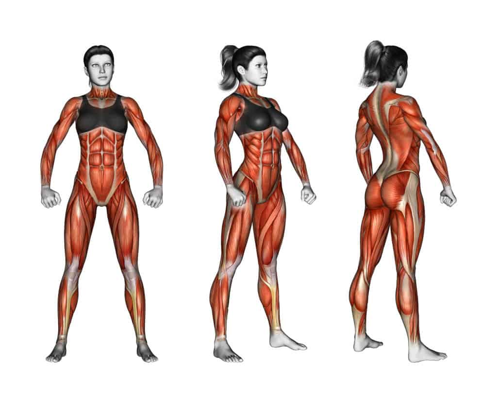 11 Steps Guide To Women's Weight Training 1