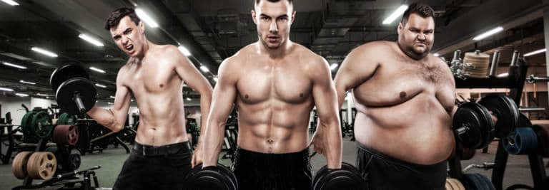Understanding Body Types To Reach Fitness Bliss