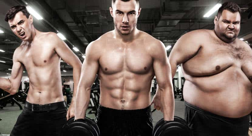 Different body types for better fitness