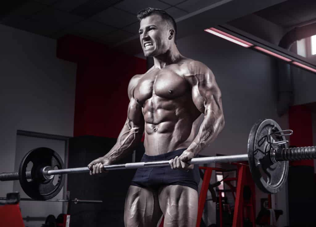 How body types dictate your muscle growth