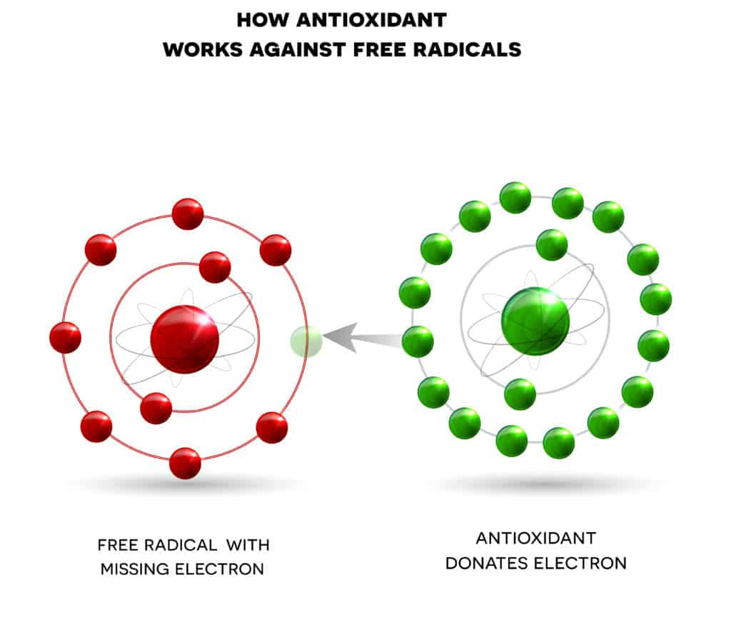 how do antioxidants work