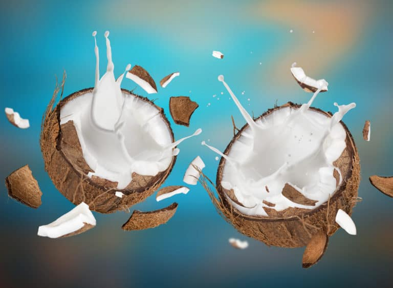Coconut Milk Nutrition:Is It Healthy For Your Body?