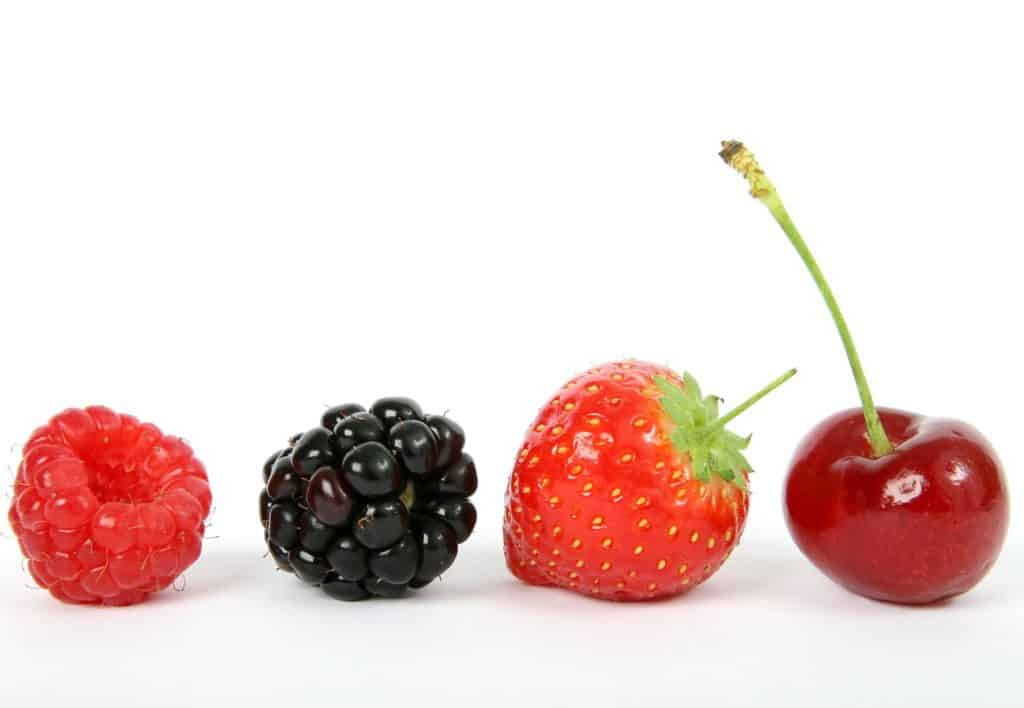 functional foods:berries