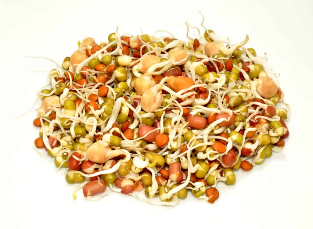 How to reduce intake of Antinutrients:Sprouting