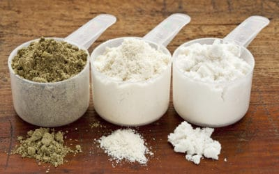 Whey Protein Vs. Plant Protein:Dispelling The Hype