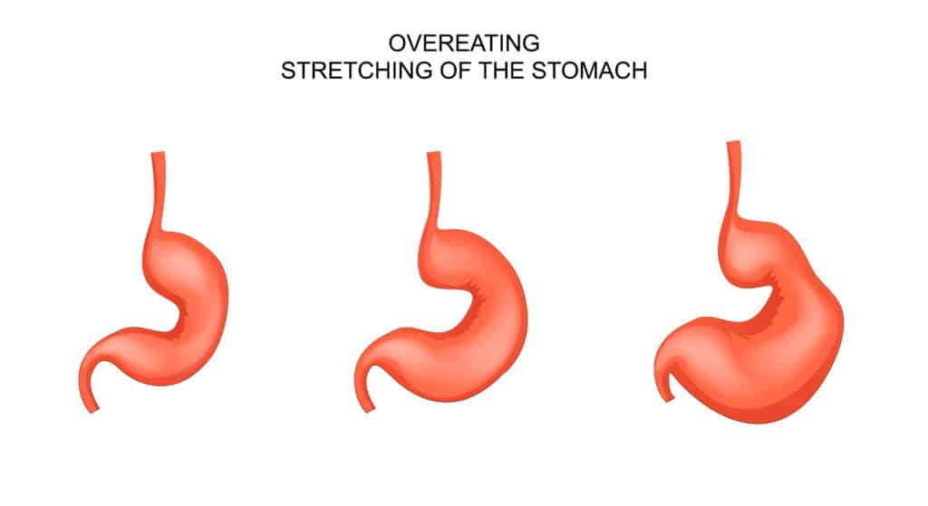 Overeating Symptoms