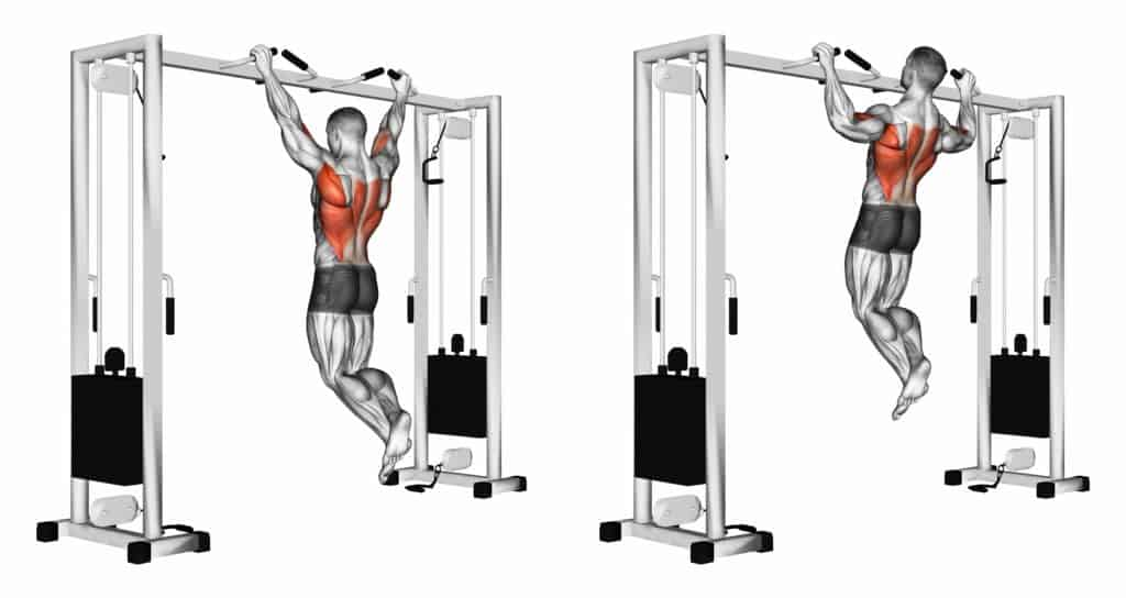 Top Compound Exercises:Pull ups
