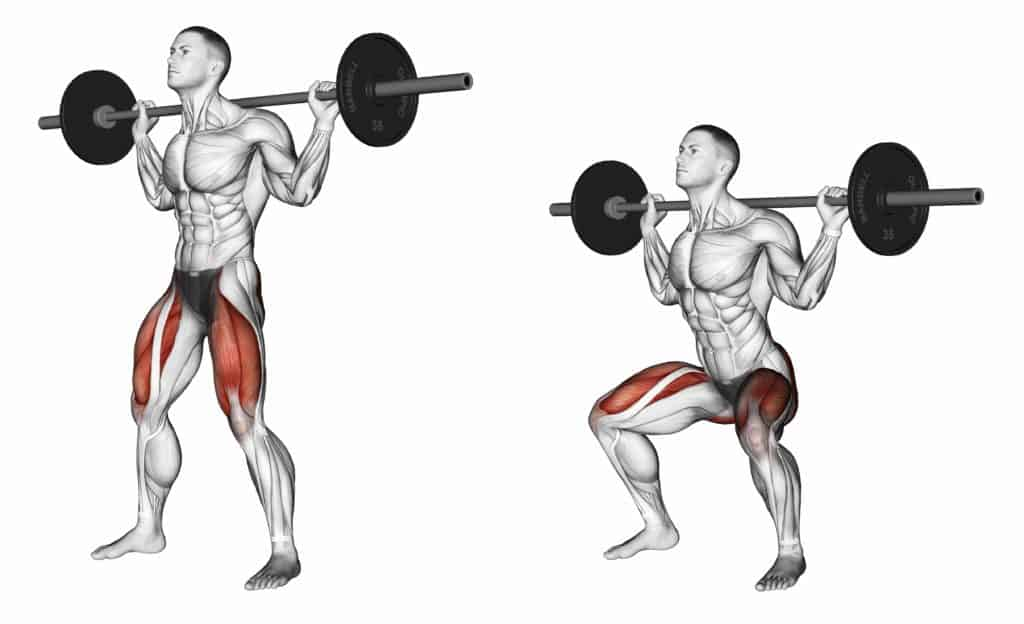 Compound exercises vs Isolation excercises:Squats
