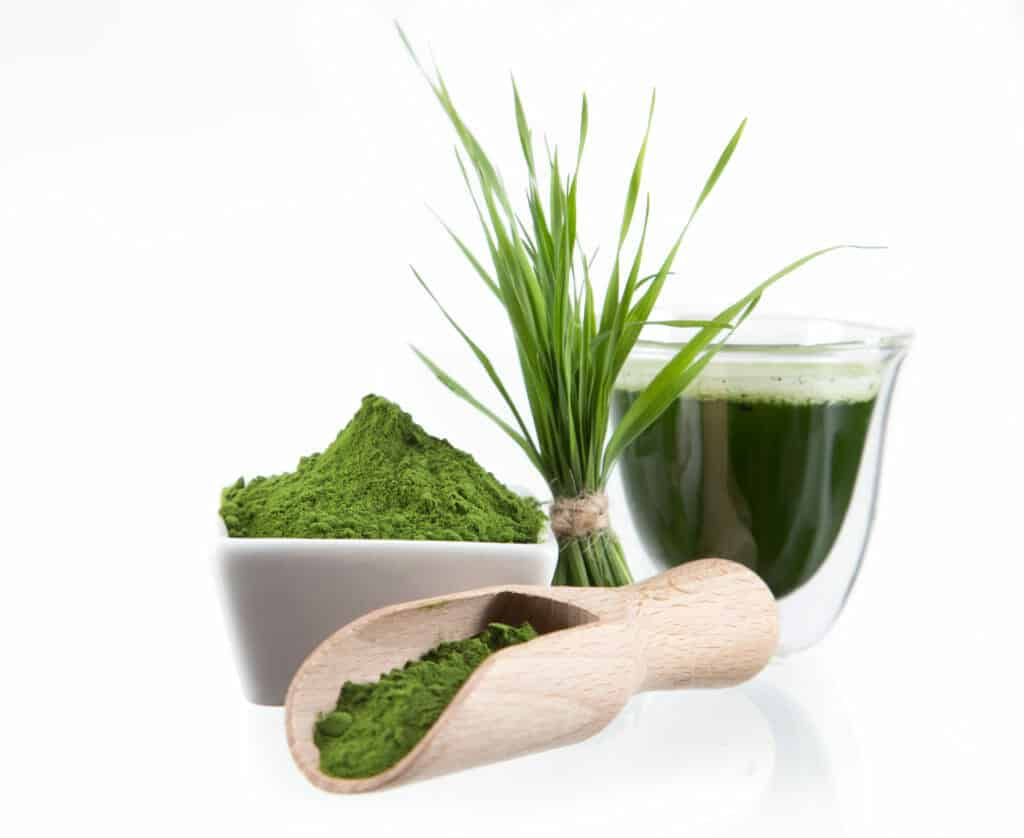Natural herbs for energy:Spirulina
