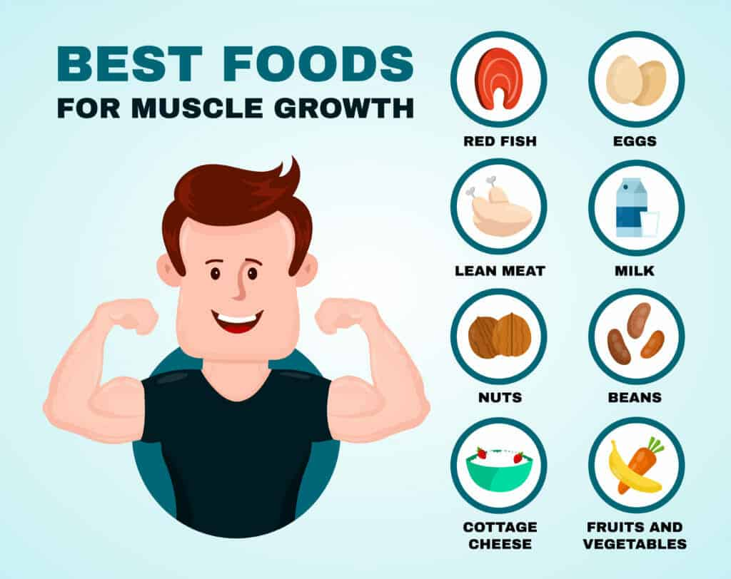 Discover the 18 best foods for muscle growth