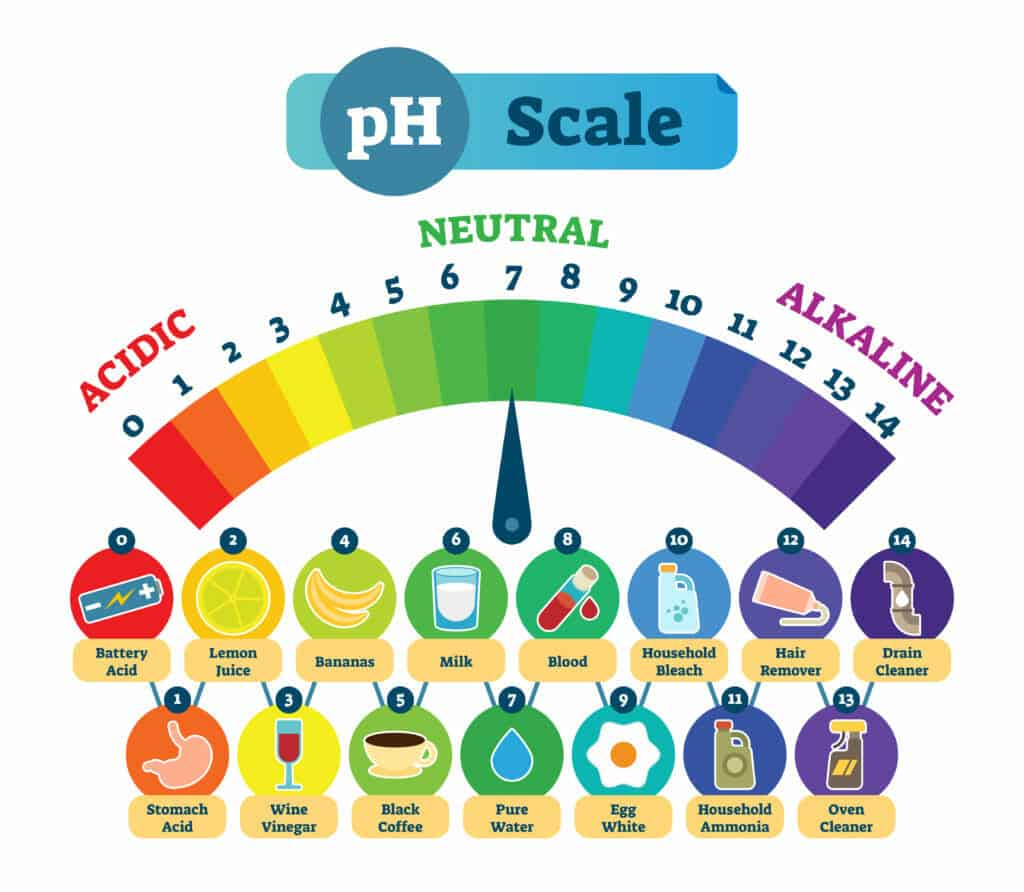 Acidic vs. Alkaline-Forming Foods- Foods That Affect Your pH Balance