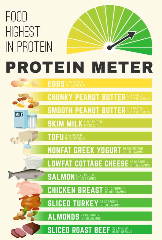 How Long Does It Take To Get Abs?:Increase Protein in Your Diet