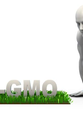 Non GMO Concept with Man Looking Closely to Verify