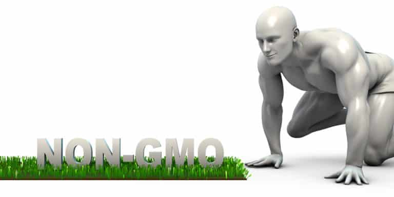 Safe or Harmful? The Reality Behind GMO Foods