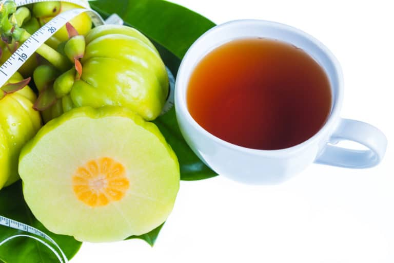 Understanding The Pros and Cons of Garcinia Cambogia