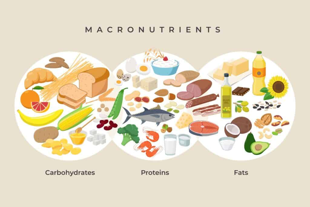 Main food groups - macronutrients. Carbohydrates, fats and proteins in comparison